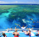 TROUBLED TIMES: A Calypso Reef Cruise on the Great Barrier Reef. Travel agents have been smashed by COVID-19 although Australians are starting to realise just what wonders there are to see at home.